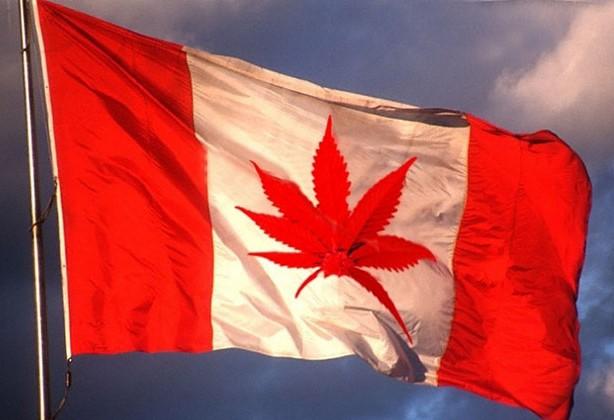 Правительство Канады планирует полностью легализовать марихуану в 2017 году