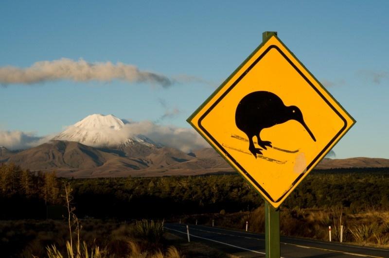 Правительство Новой Зеландии пересмотрит число иммигрантов