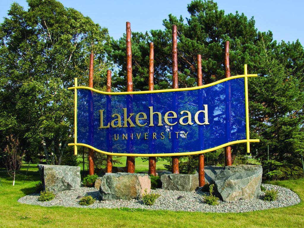 Университет Лейкхед в Онтарио