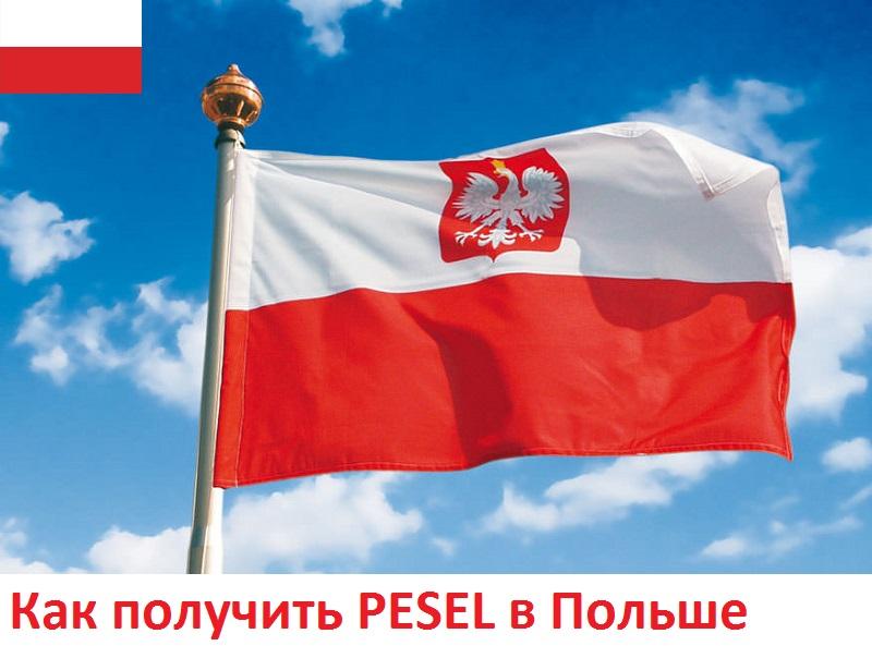 Получение номера социального страхования в Польше. PESEL