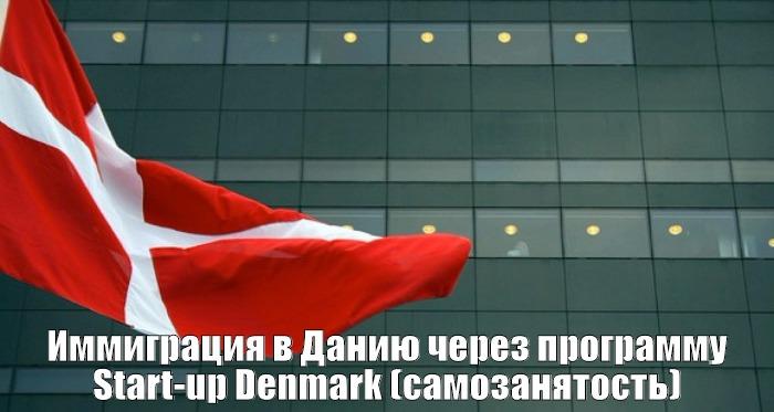 Иммиграция в Данию через программу Start-up Denmark (самозанятость)