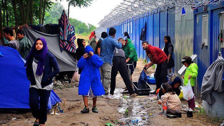 Дания и Австрия хотят создать центры для беженцев за пределами Евросоюза