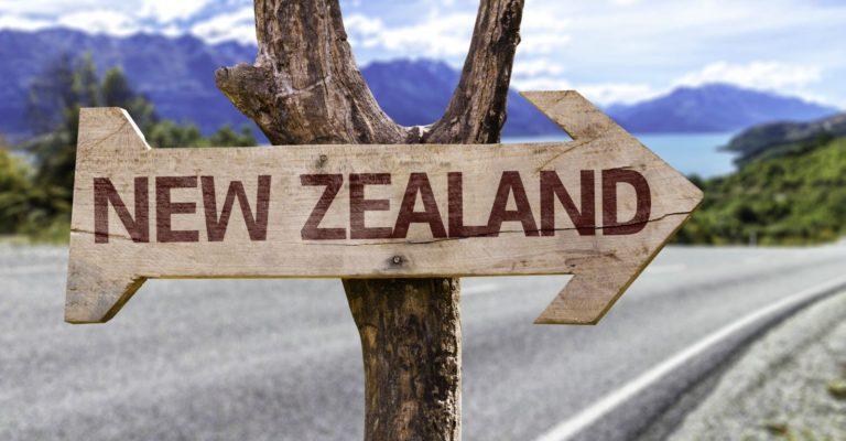 Число выданных рабочих виз в Новой Зеландии достигло рекордного уровня