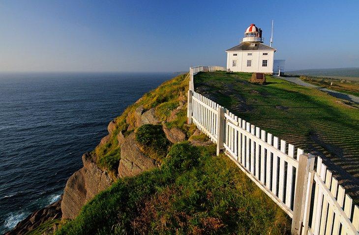 Ньюфаундленд и Лабрадор опубликовал список работодателей-участников Атлантической пилотной программы