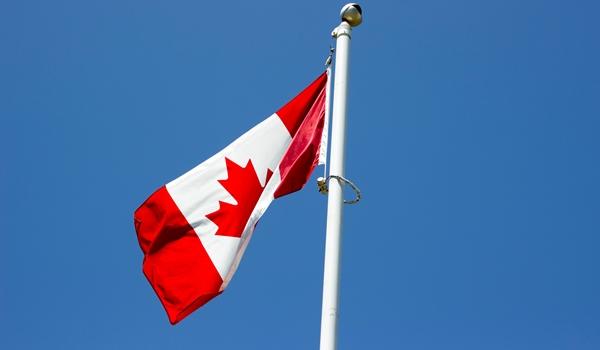 Дайджест популярных статей по Канаде за прошлую неделю