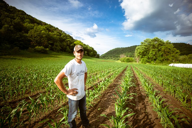 Канада запускает иммиграционный пилот для сельхозработников