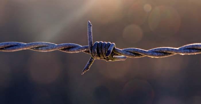 Просители убежища в США могут оказаться в тюрьме
