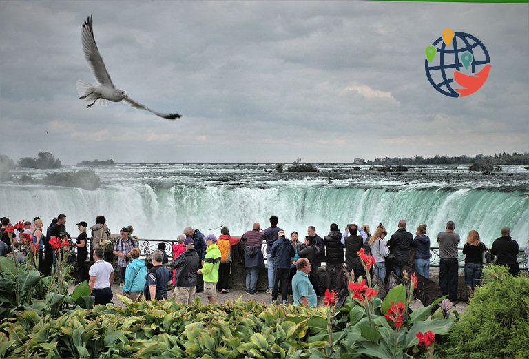 В Канаде резко возросло количество временных виз