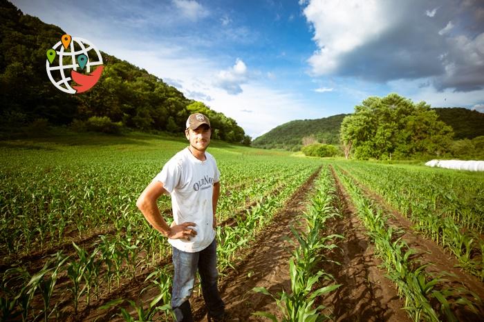 Иммиграция в Саскачеван для фермеров-предпринимателей (Farm Owner and Operator)