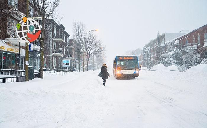 Обходите их стороной: самые проблемные жилые комплексы Монреаля