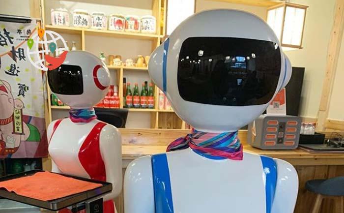 В канадских ресторанах роботы постепенно заменяют людей