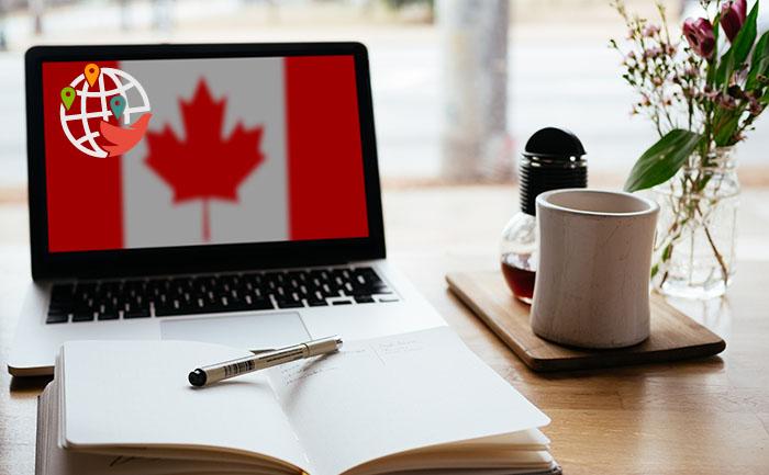 Колледжи Канады теперь принимают результаты онлайн-теста по английскому языку