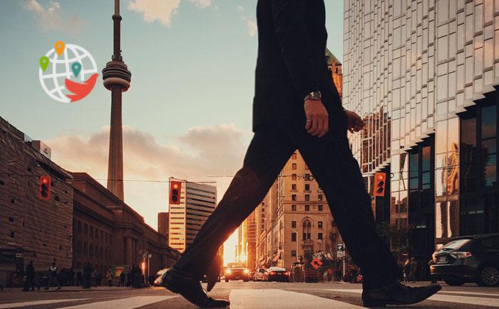 Только половина иммигрантов имеют предыдущий опыт работы в Канаде