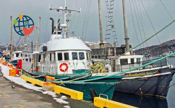 Правительство выделит колоссальные деньги на очистку гавани
