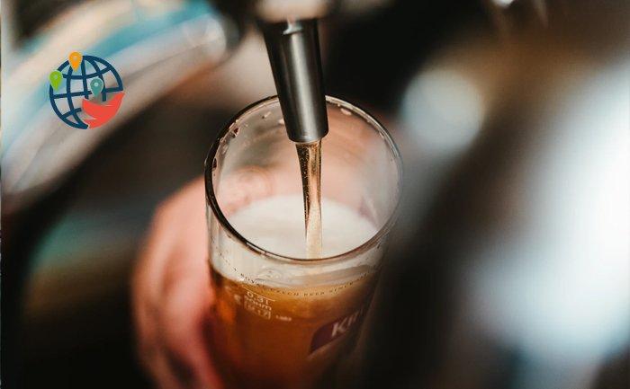 В Канаде предлагают оценить похмелье от пива за $1 200 USD