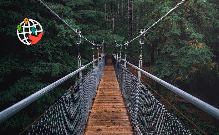 7 потрясающих мостов в Онтарио, посещение которых подарит незабываемые эмоции