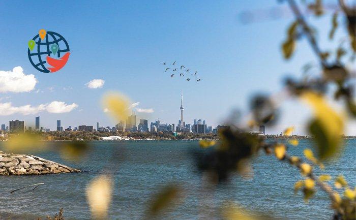 Провинция Онтарио провела крупный отбор для специалистов рабочих профессий