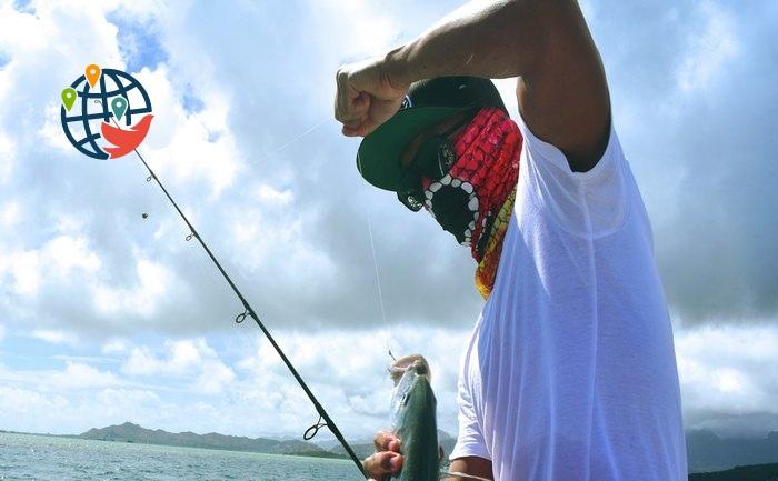 Вы устали от пандемии? Тогда вам пора на рыбалку!