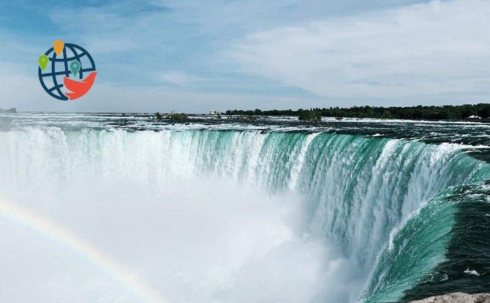 Онтарио провела отбор сразу по четырем потокам