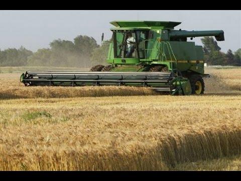 Работа в сельском хозяйстве в Канаде