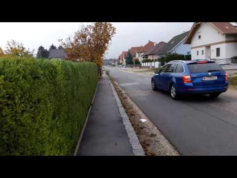 Говорим о школах и группе продлённого дня в Австрии