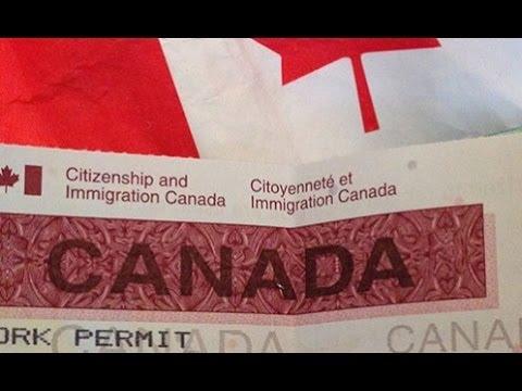 Рабочие специальности и сайты, обещающие рабочую визу в Канаде