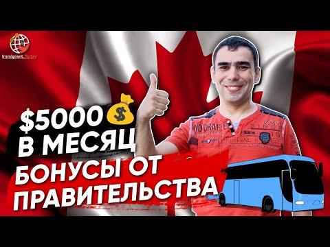 Работа водителем автобуса в Канаде: требования, зарплата и бонусы