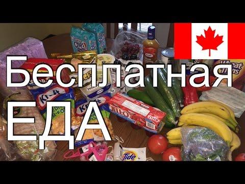Бесплатная еда в Канаде. Откровенно про канадский фудбанк.