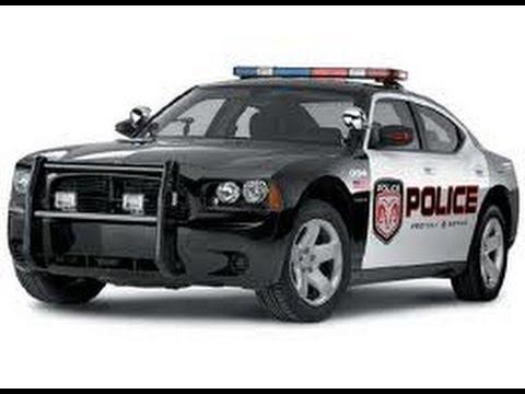 Полиция в США: стоит ли бояться беспредела со стороны правоохранителей?