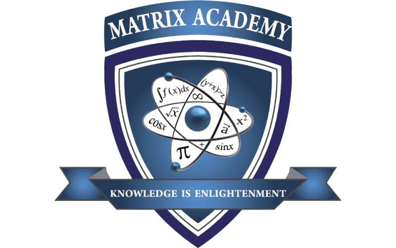 Частная школа Matrix Academy